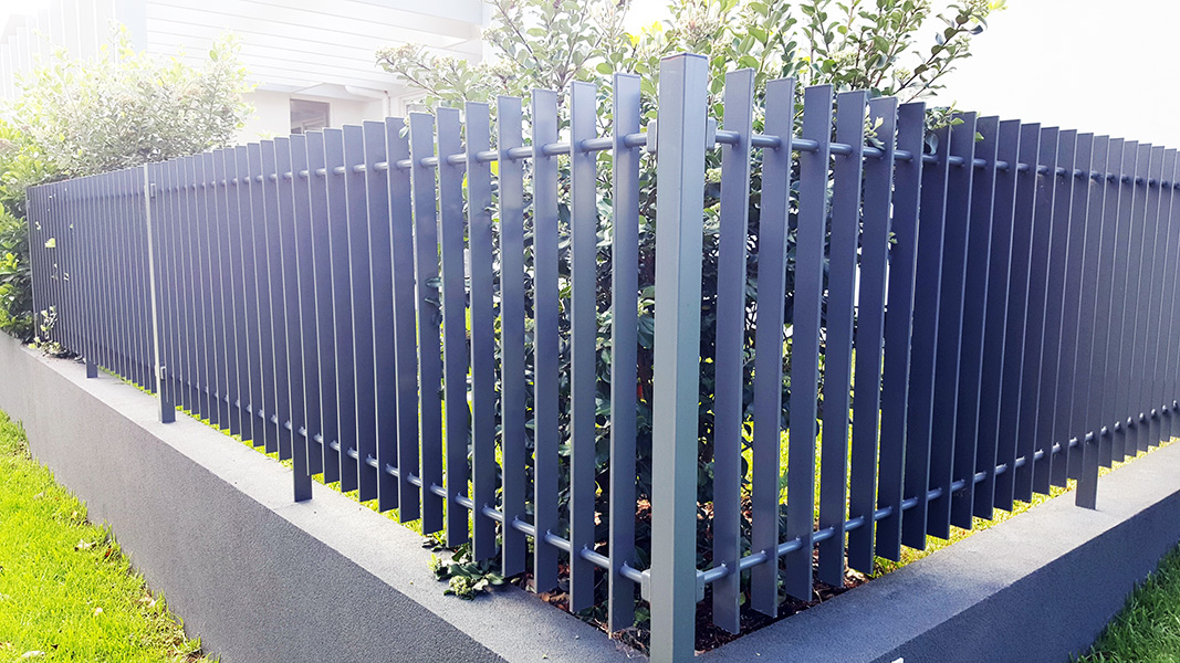 Front boundary fence
